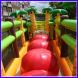 feestcentrale Bouncingballs