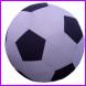 feestcentrale opblaasvoetbal
