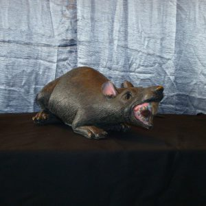 Rat zetstuk 2
