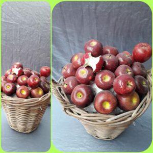 Mand Appels Decoratie
